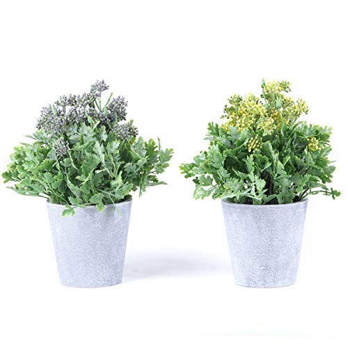 Set of 2 The Bloom Times Mini Artificial Potted Plants Plastic Small Fake Plants in Pots Faux Greenery for Home Office Farmhouse Bathroom Table Garden Patio Shelf Decor