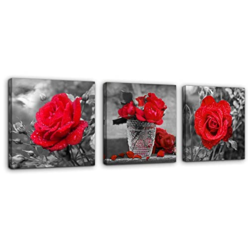 Buy Red Rose Flower Wall Art For Bedroom Bathroom Wall Decoration Black And White 3 Piece Framed Canvas Prints Artwork Wall Decor Contemporary Home Living Room Office Home Wall Decoration 12x12 3