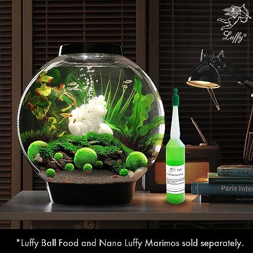 Thrive with Minimal Care Luffy Marimo Moss Unique Green Plants Create Legendary Lush Landscape in Your Aquarium Perfect D/écor Ideal Habitat for Aquatic Pets