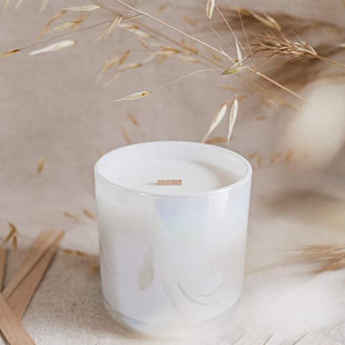 Crackling Candle Wicks for Coconut Soy Wax Blend The Wooden Wick Co 100 Wicks, X-Large Clips