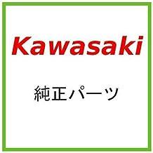 New Kawasaki OEM Guard 55020-7007
