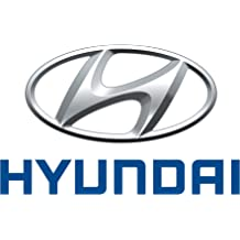 Top Right Genuine Hyundai 86160-25001 Cowl Cover Assembly