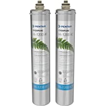 Everpure Insurice I2000-2 Replacement Water Filters EV9612-22 Package Of 2