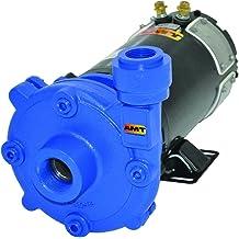 115V 1 HP Cast Iron AMT Pump 5760-95 Submersible Shredder Sewage Pump 2 NPT Female Discharge Port 2 NPT Female Discharge Port AMT Pumps 1 Phase Curve A