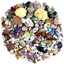 Chillipepperstone 12 Natural Mineral Untumbled Rock Science Stone Collection Non-Metalic Sample Set